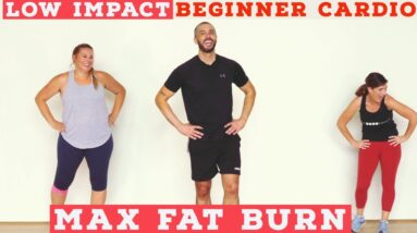 Fat burning Beginner LOW IMPACT home cardio workout - all standing!