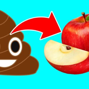 13 Foods That Make You Poop