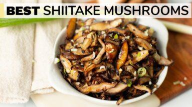 SHIITAKE MUSHROOMS RECIPE   how to cook shiitake mushrooms